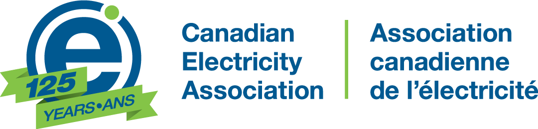 Canadian Electricity Association Cea 6th Annual